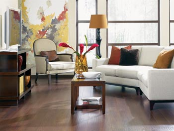 Laminate Flooring in Minnesota City
