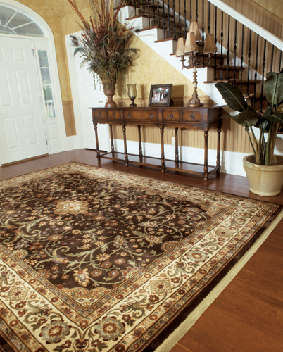 Area Rugs in Minnesota City, MN